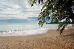 Palm Beach Stockfoto