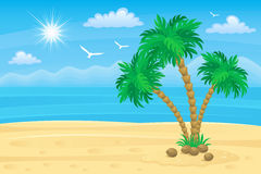 Palm beach Stock Photography