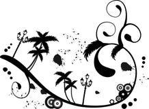 Palm Beach Imagens de Stock