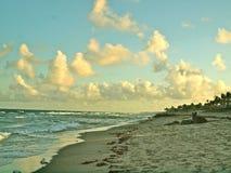 Palm Beach Fotografía de archivo