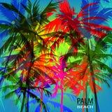 Palm Beach Photographie stock libre de droits