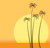 Palm Beach illustration stock
