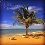 Palm Beach Image libre de droits