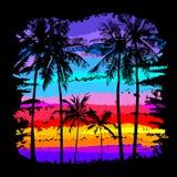 Palm Beach 5 Lizenzfreies Stockfoto