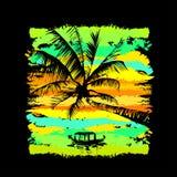 Palm Beach 9 Image libre de droits