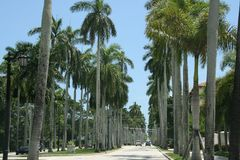 Palm Beach Stockbild