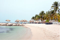Palm beach on Aruba island Stock Photography