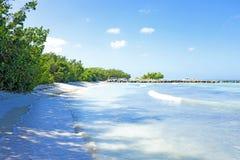 Palm beach at Aruba island Stock Photo