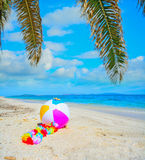 Palm and beach ball by the sea Stock Photos