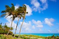 Palm Beach beach coastline Florida US Stock Photos