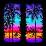 Palm beach 7 Royalty Free Stock Photo