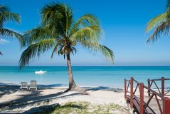 Palm on the beach of Cayo Jutias in Cuba. Boat and blue sea have Royalty Free Stock Photography