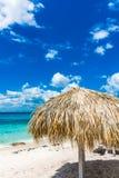 Palm beach chaise longue Royalty Free Stock Photos