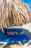 Palm beach chaise longue Royalty Free Stock Images