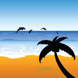 Palm on the beach with dolphins color vector Stock Image