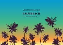 Palm Beach Fondo dibujado mano del vector para el diseño tropical SK foto de archivo libre de regalías