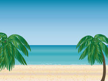 Palm beach horizon Royalty Free Stock Image