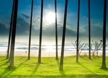 Palm Beach met Schaduw royalty-vrije stock afbeelding