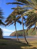 Palm Beach na San Sebastian de losie angeles Gomera Obraz Royalty Free