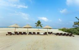 Palm Beach Ocean umbrella sunbed sand tropical summer travel Royalty Free Stock Photography