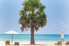 Palm Beach Ocean umbrella sunbed sand tropical summer travel Stock Image