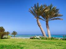 Palm Beach och hav i Marsa Alam. Egypten Arkivfoto