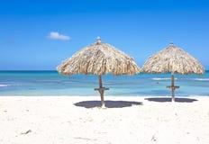 Palm Beach på Aruba Royaltyfri Fotografi