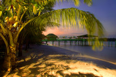 Palm beach paradise. Sunset at white beach, enlightened with lanterns, Suriname Stock Image