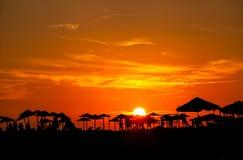 Palm Beach paraply på solnedgången Royaltyfria Foton
