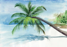 Palm beach resort vector illustration