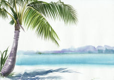 Palm beach resort. Tropical resort view with a palm. Original watercolor painting Stock Images