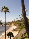 Palm beach with rocks. Shot of a sand beach scene with palmtrees and  small rocks in the water. California, USA Stock Photo