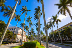 Palm Beach royal Palm Way Florida US Royalty Free Stock Photography