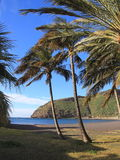 Palm Beach on San Sebastian de la Gomera. Canary Island, Atlantic Ocean, Spain, Europe Royalty Free Stock Image
