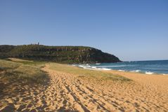 Palm Beach Sand Dunes Barrenjoey. Palm Beach with the headland at Barrenjoey in Sydney. Historic Barrenjoey Lighthouse in the distance. Sand dune planting Royalty Free Stock Photos
