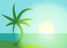 Palm beach scene Royalty Free Stock Photo