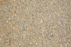 Palm Beach shells concrete soil in Florida Royalty Free Stock Photos