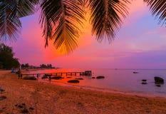 Palm Beach, siluetas de las islas de Maldivas de los árboles de palmas en el sunse Fotos de archivo libres de regalías