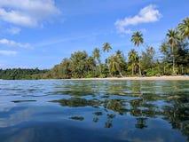 Palm Beach som reflekterar i vattnet royaltyfri fotografi