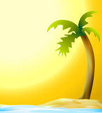 Palm and beach in sunset Royalty Free Stock Images
