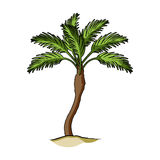 Palm beach tree.Summer rest single icon in cartoon style rater,bitmap symbol stock illustration. Royalty Free Stock Photo