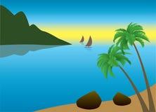 Palm Beach tropicale di mattina Immagine Stock Libera da Diritti
