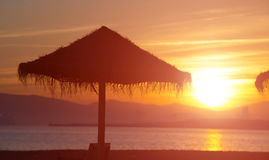 Palm beach umbrella in sunset Royalty Free Stock Photo