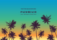 Palm beach. Vector hand drawn background for tropical design. Sk Royalty Free Stock Photo