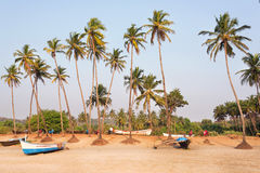 Palm beach with wooden boats and parking place in Goa, India. Chilling mood landscape. Palm beach with wooden boats and parking place in Goa, India. Chilling Royalty Free Stock Images