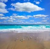 Palm Beach wyrzucać na brzeg linię brzegową Floryda USA Zdjęcia Stock