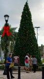 Palm Beachafzet in het Westenpalm beach, Florida Royalty-vrije Stock Foto's