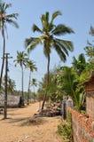 Palm beaches Goa Royalty Free Stock Photo