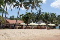 Palm- Beachrestaurant Stockfotos