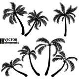 Palm black silhouette Royalty Free Stock Photo
